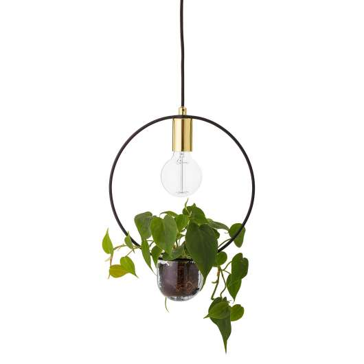 Bloomingville - Pendant Lamp - Gold (68801023)